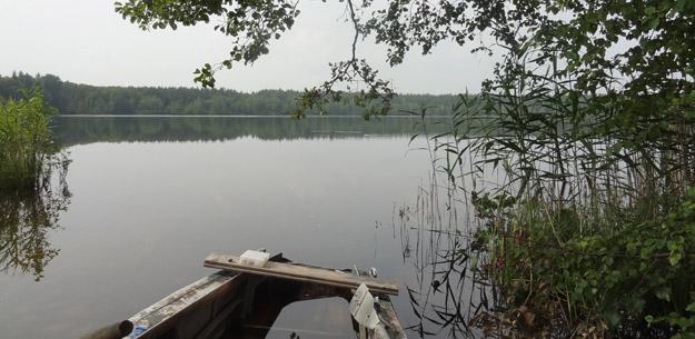Озеро Золотая Вешка, Северное Подмосковье. Фото Ж.Кузьминой