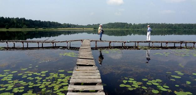 Озеро Кузнецовское, Северное Подмосковье. Фото Ж.Кузьминой
