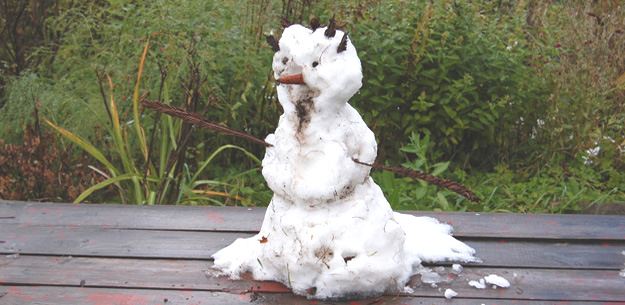 Первый снег. Фото О.Гринченко