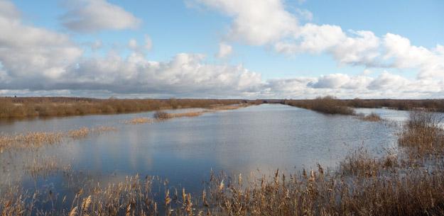 Паводок на Дубне. Фото О.Гринченко