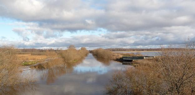 Осенний паводок на Дубне. Фото О.Гринченко