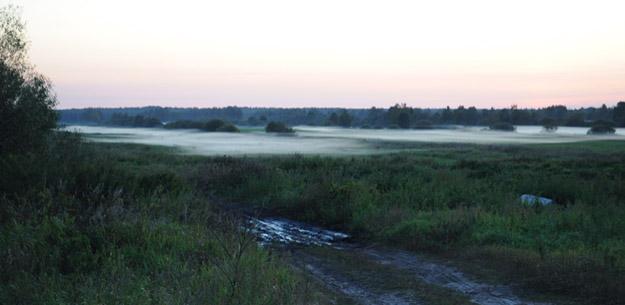Туман в пойме р. Дубны, Талдомский район Московской области. Фото О.Гринченко