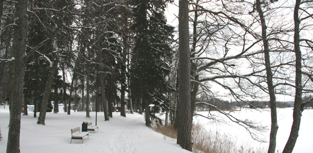Парк у озера Пюхаярве, Эстония. Фото О.С. Гринченко